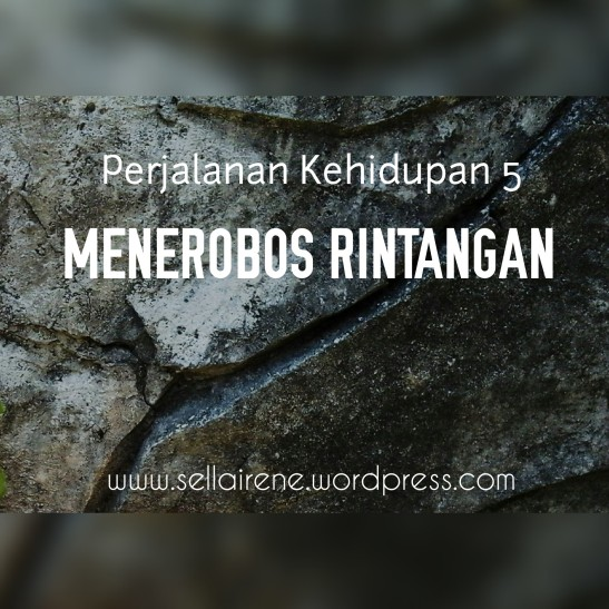 MENEROBOS RINTANGAN